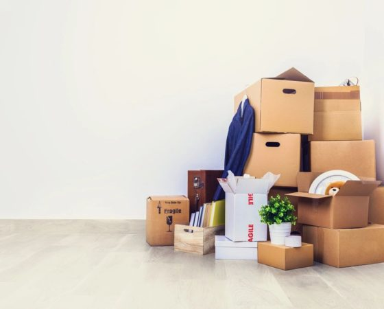 Top 10 Tips for Downsizing with Dordy – I Have too Much stuff!